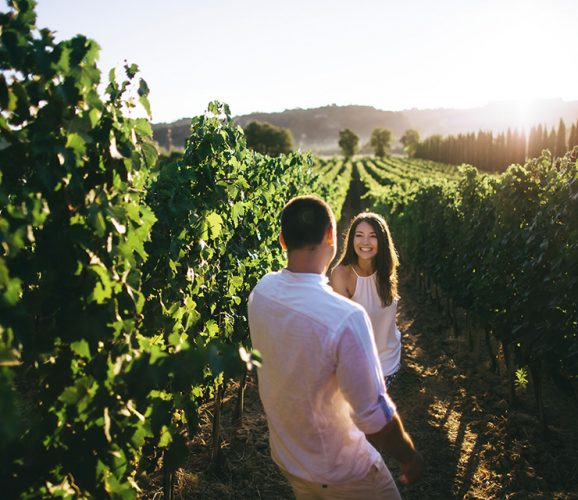 hawthorn-creative-hospitality-marketing-Best-Winery-Websites-of-2019-feature-1